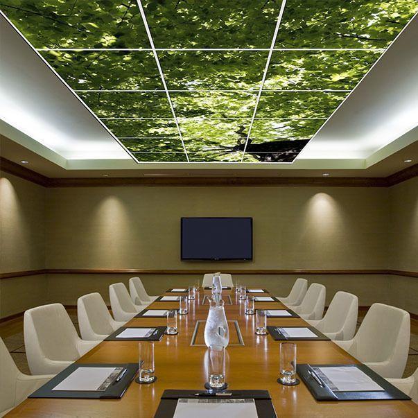 Verlicht fotoplafond